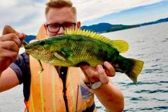 Malte Reiner konnte einen schönen Lippfisch in Norwegen überlisten